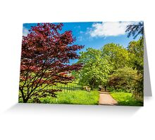 Primary Colours of Spring Greeting Card