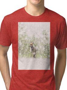 Fox, First Snow Tri-blend T-Shirt