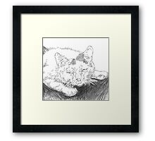 Micheal the Ugly Cat Framed Print