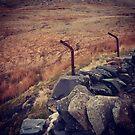 Welsh landscape by Jonesyinc