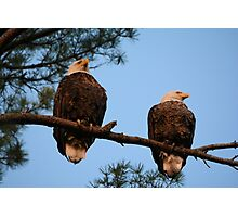 The Ackley Pair Photographic Print