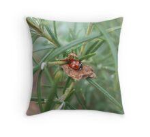 Ladybird.  Throw Pillow