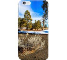 San Francisco Peaks Arizona iPhone Case/Skin