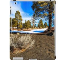 San Francisco Peaks Arizona iPad Case/Skin