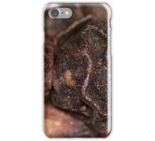 Black Pepper iPhone Case/Skin