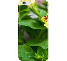 Flowers photographed in nature iPhone Case/Skin