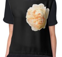 Yellow rose closeup isolated on black background Chiffon Top