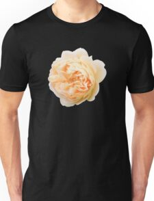 Yellow rose closeup isolated on black background Unisex T-Shirt