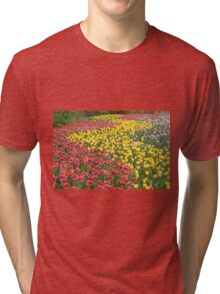 Rows of Tulips in Spring Tri-blend T-Shirt