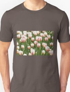Tulips in spring time T-Shirt