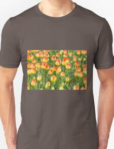 Tulips in the spring time T-Shirt