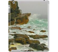 Cape Point, South Africa iPad Case/Skin