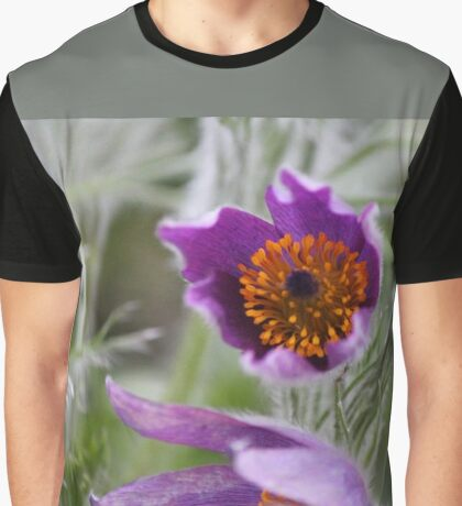 Pasque Flower - Pulsatilla Graphic T-Shirt