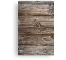 wood texture - wooden background 3 Canvas Print