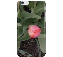 Love & Respect Mother Nature iPhone Case/Skin