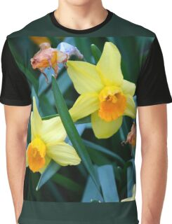 Fortune Daffodils Graphic T-Shirt