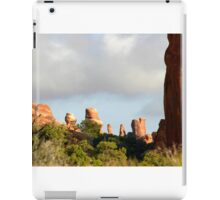 Arches 006 iPad Case/Skin