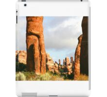 Arches 007 iPad Case/Skin