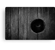 Scary Eye Looking Through Hole In Wood Canvas Print