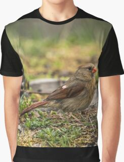 Female Northern Cardinal Graphic T-Shirt