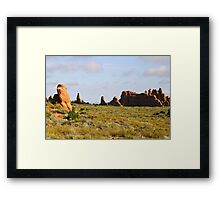 Arches 012 Framed Print