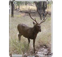 Sambar Deer of Ranthambore  iPad Case/Skin