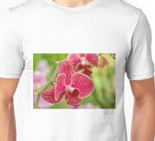 Pink Orchid Unisex T-Shirt