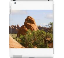 Arches 015 iPad Case/Skin
