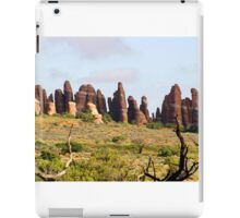 Arches 016 iPad Case/Skin