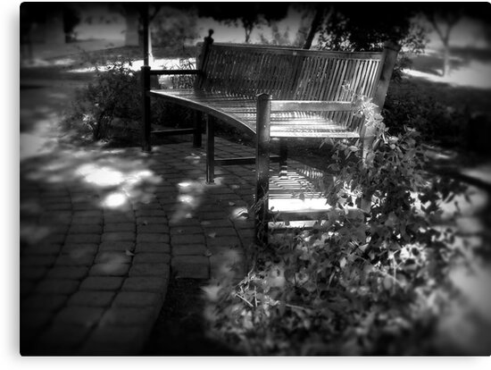 Come With Me & Sit in the Shade  by Lucinda Walter