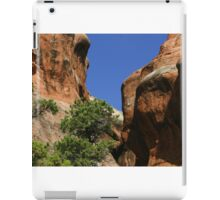 Arches 019 iPad Case/Skin