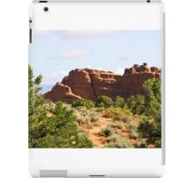 Arches 021 iPad Case/Skin