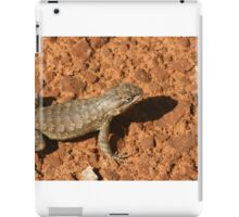 Arches 031 iPad Case/Skin
