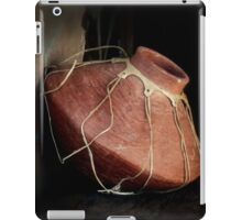 Southwest Pottery iPad Case/Skin