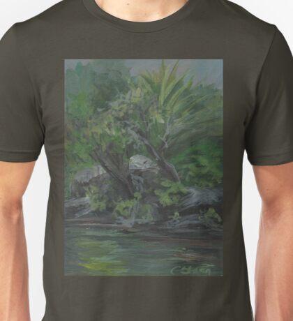 Hidden Fountain AC20130715a  Unisex T-Shirt