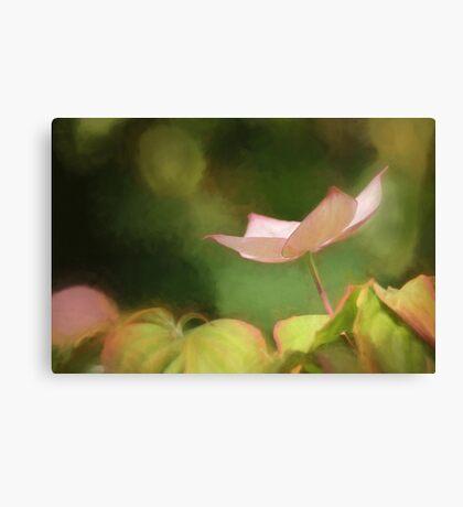 Painterly Pink Dogwood Canvas Print