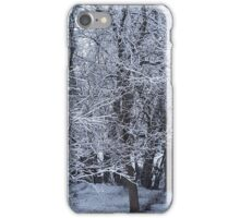Placid Snow iPhone Case/Skin