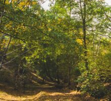 Mount Lofty Botanical Gardens Sticker