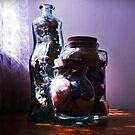 Shells in Bottles by myraj