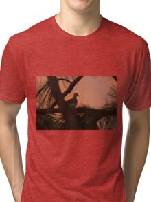 Mourning Dove Tri-blend T-Shirt