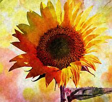 SUNFLOWER SOUL by Sandra  Aguirre