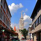 View of Matthias Church by zumi