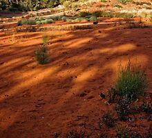 The Red Centre at the National Botanic Garden in Canberra/ACT/Australia by Wolf Sverak