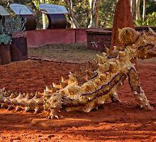 """Wildlife"" in the National Botanic Garden in Canberra/ACT/Australia by Wolf Sverak"