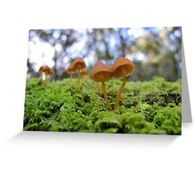 Forest Redheads Greeting Card