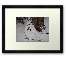 Snowy Tree Framed Print