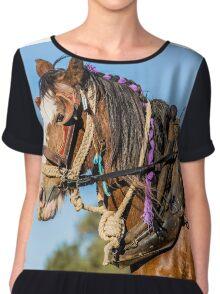 Heavy Horse Chiffon Top