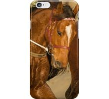 Mahuta  iPhone Case/Skin