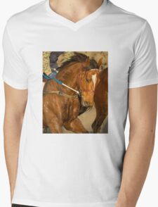 Mahuta  Mens V-Neck T-Shirt