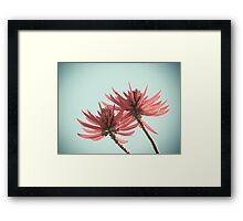 West Coast Nature 2 Framed Print